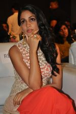 Lavanya Tripathi at Bhale Bhale Magadivoy Movie Audio (64)_55d07ca86c97d.jpg