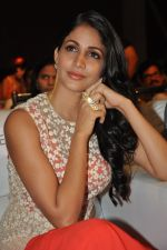 Lavanya Tripathi at Bhale Bhale Magadivoy Movie Audio (74)_55d07cb60a2e8.jpg