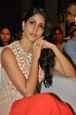 Lavanya Tripathi at Bhale Bhale Magadivoy Movie Audio (75)_55d07cb722cea.jpg