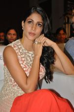 Lavanya Tripathi at Bhale Bhale Magadivoy Movie Audio (76)_55d07cb831015.jpg