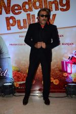 Jackie Shroff at Wedding Pullav film launch on 17th Aug 2015
