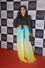at the grand finale of Lakme Fashion Week 2015 on 30th Aug 2015