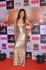 Payal Rohatgi at Gr8 ITA Awards in Mumbai on 6th Sept 2015 (71)_55ed6007dd833.JPG