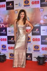 Payal Rohatgi at Gr8 ITA Awards in Mumbai on 6th Sept 2015 (72)_55ed60089d722.JPG