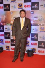 Sashi Ranjan at Gr8 ITA Awards in Mumbai on 6th Sept 2015 (29)_55ed55a395006.JPG