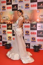 at Gr8 ITA Awards in Mumbai on 6th Sept 2015 (226)_55ed567e02a43.JPG