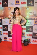 at Gr8 ITA Awards in Mumbai on 6th Sept 2015 (259)_55ed56867b805.JPG