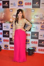 at Gr8 ITA Awards in Mumbai on 6th Sept 2015 (260)_55ed56872e6e5.JPG