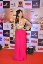 at Gr8 ITA Awards in Mumbai on 6th Sept 2015 (261)_55ed5687ecd4a.JPG