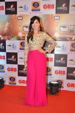 at Gr8 ITA Awards in Mumbai on 6th Sept 2015 (262)_55ed5688e049e.JPG