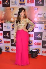 at Gr8 ITA Awards in Mumbai on 6th Sept 2015 (263)_55ed5689b0f16.JPG