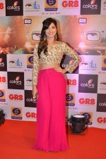 at Gr8 ITA Awards in Mumbai on 6th Sept 2015 (264)_55ed568aab433.JPG