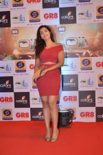 at Gr8 ITA Awards in Mumbai on 6th Sept 2015 (326)_55ed569bc911b.JPG