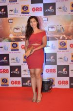 at Gr8 ITA Awards in Mumbai on 6th Sept 2015 (327)_55ed569cd1520.JPG