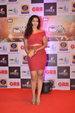 at Gr8 ITA Awards in Mumbai on 6th Sept 2015 (328)_55ed569dca64e.JPG