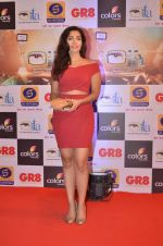 at Gr8 ITA Awards in Mumbai on 6th Sept 2015 (330)_55ed569f961b6.JPG