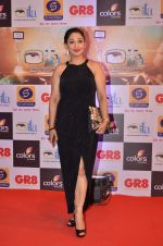 at Gr8 ITA Awards in Mumbai on 6th Sept 2015 (332)_55ed56a15f124.JPG