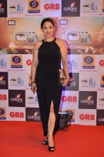 at Gr8 ITA Awards in Mumbai on 6th Sept 2015 (333)_55ed56a264a9c.JPG