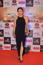 at Gr8 ITA Awards in Mumbai on 6th Sept 2015 (334)_55ed56a36aa46.JPG