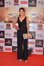 at Gr8 ITA Awards in Mumbai on 6th Sept 2015 (341)_55ed56a4e8720.JPG
