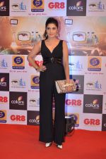 at Gr8 ITA Awards in Mumbai on 6th Sept 2015 (342)_55ed56a59e135.JPG