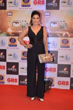 at Gr8 ITA Awards in Mumbai on 6th Sept 2015 (343)_55ed56a69582c.JPG