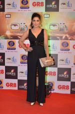 at Gr8 ITA Awards in Mumbai on 6th Sept 2015 (345)_55ed56a7dc993.JPG