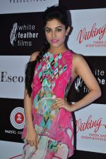 Priya Banerjee at Jasbaa song launch in Escobar on 7th Sept 2015 (537)_55eea30890a5c.JPG