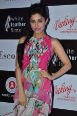 Priya Banerjee at Jasbaa song launch in Escobar on 7th Sept 2015 (538)_55eea309b90b8.JPG