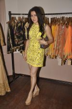 Kehkashan Patel at Designer Pallavi Jaikishan_s fashion preview in Orient Express on 9th Sept 2015 (24)_55f1550c88a6d.JPG