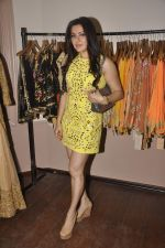 Kehkashan Patel at Designer Pallavi Jaikishan_s fashion preview in Orient Express on 9th Sept 2015 (25)_55f1550d33137.JPG