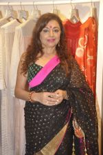 Anita Kanwal at Kashish store launch in Huges Road on 15th Sept 2015 (39)_55f92246b89a5.JPG