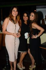 Pooja Ghai at Munisha Khatwani_s bday bash in La Rouche on 15th Sept 2015 (190)_55f9251687834.JPG