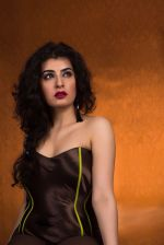Archana Veda Photoshoot on 17th Sept 2015 (18)_55fbbe4c2d40e.JPG