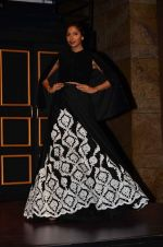 Candice Pinto at Blenders Pride tour preview in Mumbai on 21st Sept 2015 (76)_560106d3c666f.JPG