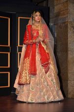 at Blenders Pride tour preview in Mumbai on 21st Sept 2015 (30)_560108c74d6cd.JPG