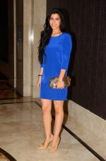 at Chivas 18 Ashish Soni event at St Regis on 22nd Sept 2015 (115)_56026046aa7b4.JPG