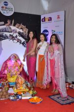 pyar ka punchnama cast at dna eco ganesha on 23rd Sept 2015 (15)_5602b63a3099e.JPG