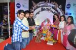 pyar ka punchnama cast at dna eco ganesha on 23rd Sept 2015 (20)_5602b6425fabe.JPG
