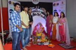 pyar ka punchnama cast at dna eco ganesha on 23rd Sept 2015 (8)_5602b6341230d.JPG