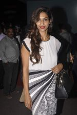 Sandhya Shetty at Singh is Bling screening hosted by Bawas in Chandan on 1st Oct 2015 (67)_560e98897f44b.JPG