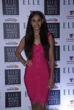 at Elle Beauty Awards  in Trident, Mumbai on 1st Oct 2015 (233)_560ea258b784d.JPG