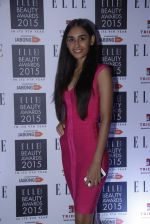 at Elle Beauty Awards  in Trident, Mumbai on 1st Oct 2015 (235)_560ea25ead72f.JPG