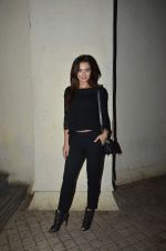 Amy Jackson snapped at Gaiety on 2nd Oct 2015