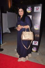 Richa Sharma at TIFA Awards in Sun N Sand on 4th Oct 2015 (12)_56122b7713116.JPG