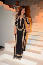 at the grand Finale of Amazon India Fashion Week on 11th Oct 2015 (1)_561b6320afc6d.JPG