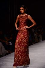 at the grand Finale of Amazon India Fashion Week on 11th Oct 2015 (11)_561b632a2776c.JPG