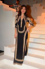 at the grand Finale of Amazon India Fashion Week on 11th Oct 2015 (28)_561b6349210e4.JPG