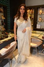 Gauri Khan at Mahesh Notandas store for festive collection launch on 23rd Oct 2015