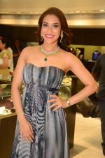 Rashmi Nigam at Mahesh Notandas store for festive collection launch on 23rd Oct 2015